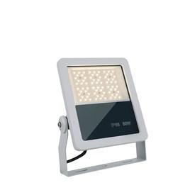 125959_Mastro LED 50W.jpg